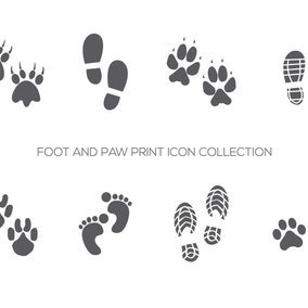 Foot and Paw Prints Icon Collection