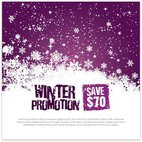 Small 1x winter promotion template