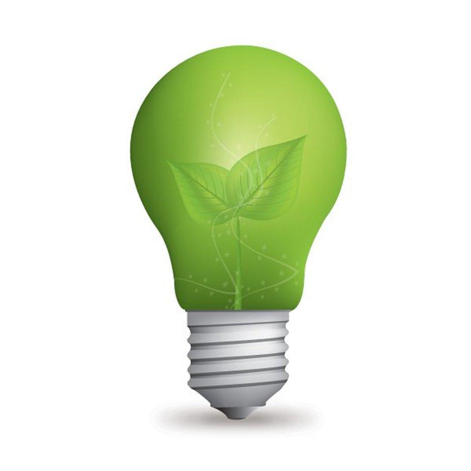 Eco Light Bulb - 9181