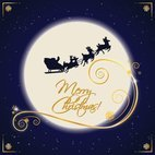 Small 1x santa sleigh moonlight