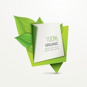 Organic Paper Banner